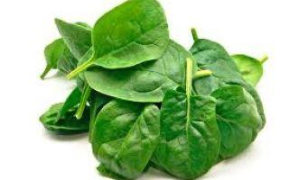 Сколько стоит шпинат: стоимость овоща