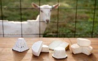 Сколько стоит козий сыр
