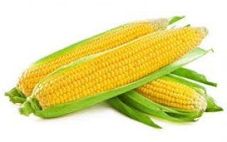 Сколько стоит кукуруза?