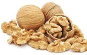 Сколько стоит грецкий орех?