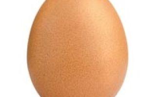 Сколько стоят куриные яйца?