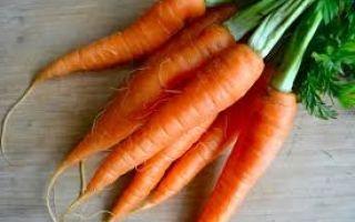 Сколько стоит морковь: посевная, красная, фиолетовая, корейская или ее семена