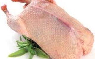 Сколько стоит мясо утки: стоимость на рынке и в магазинах