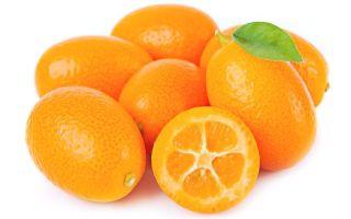 Сколько стоит кумкват: цена фрукта