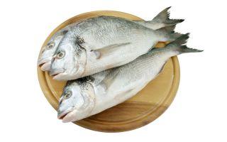 Сколько стоит рыба дорадо?