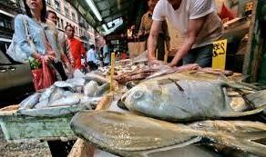килограмм рыбы цена