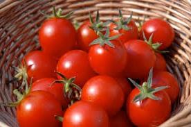 помидоры цена
