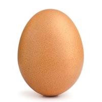 сколько стоят куриные яйца