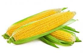 Сколько стоит кукуруза