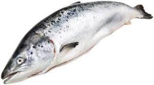 свежая рыба стоимость