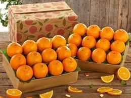 апельсины стоимость