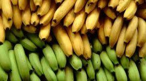 бананы стоимость